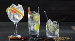Un gin tonic